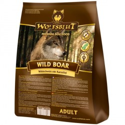 Wild Boar Adult